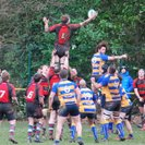 Alton 1st XV Lose Out to League Leaders Despite Better Possession and Territory Stats