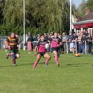 Stoke Old Boys vs Old Yardleins 38-13 (Home) (W)