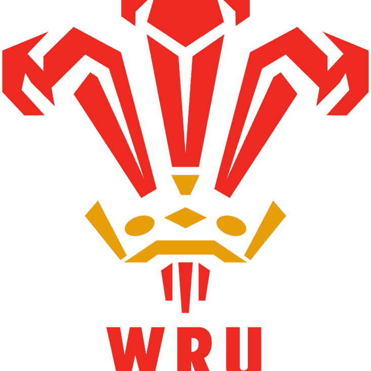 Wales v New Zealand - Saturday 25-Nov-17