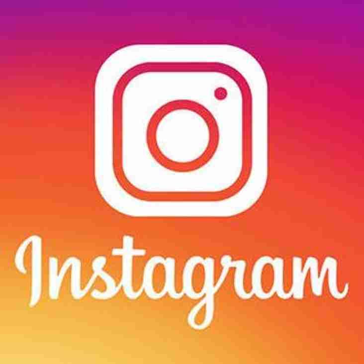 Follow Phoenix on Instagram
