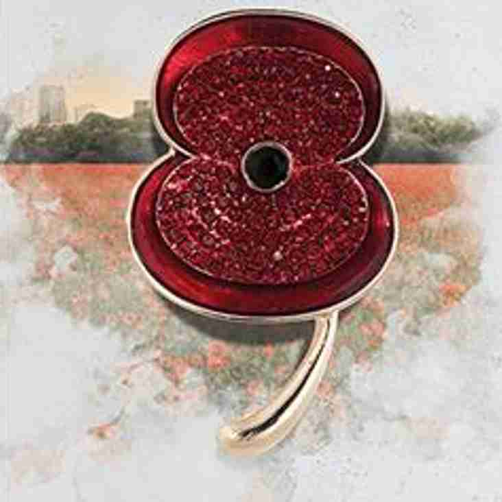 Poppy Appeal collection, 11th November 2017