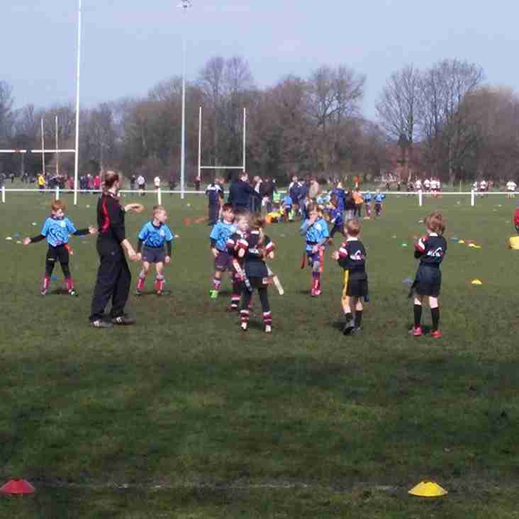 Minis in action