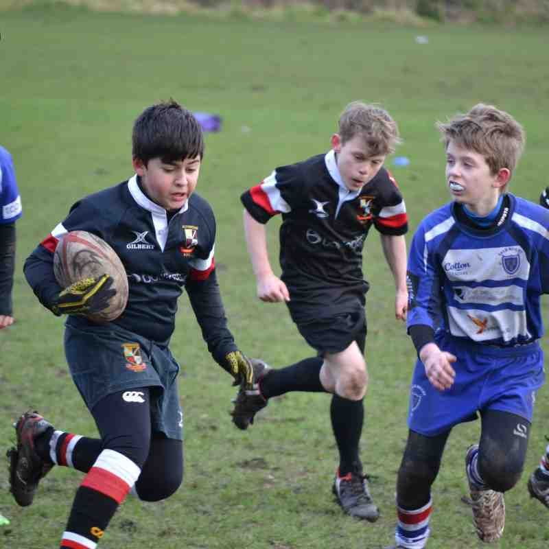 Mini and Junior Rugby - Join Our Teams