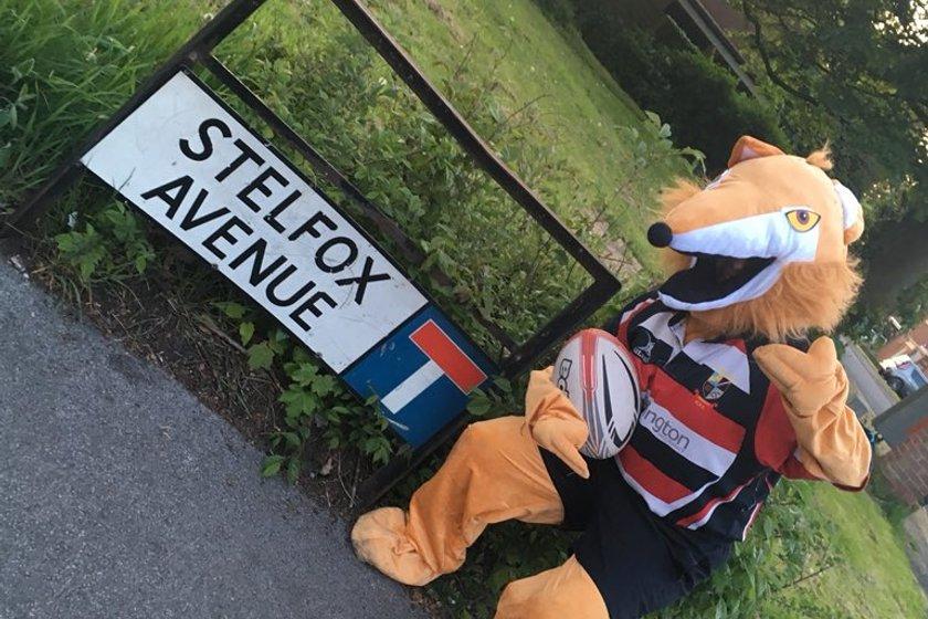 AK Foxes