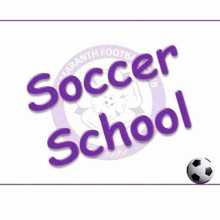 Soccer School in Summer