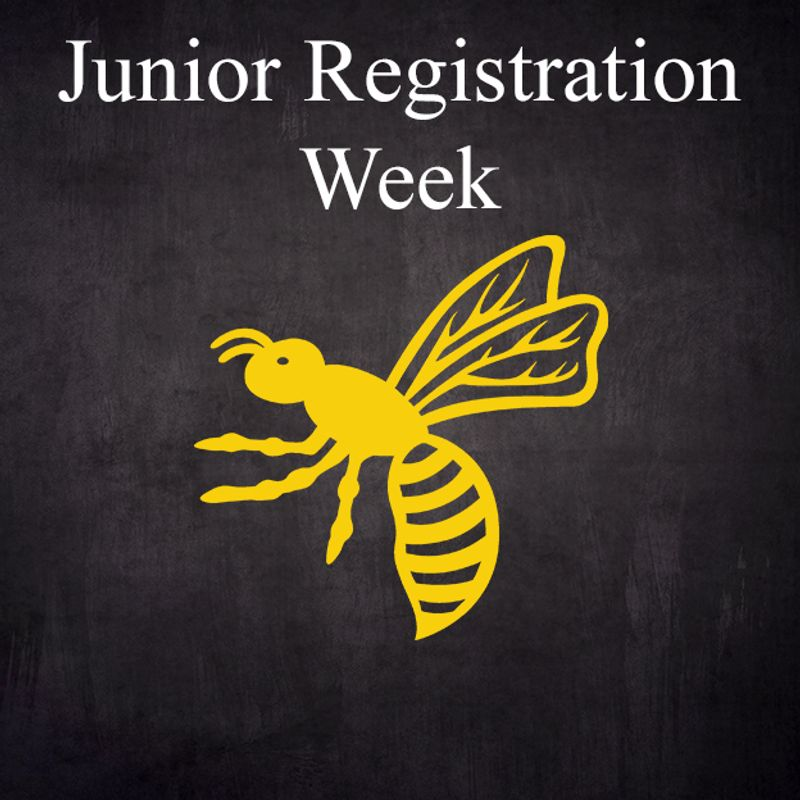 Wasps Junior Registration: What you Need to Know
