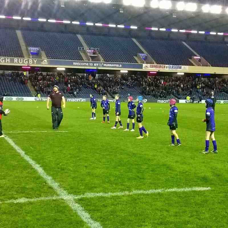Kinross Minis v Edinburgh Rugby - 27th November 2015