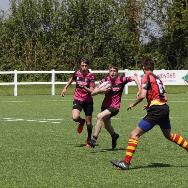 ARFC v Whitecraigs/ Brentwood RFC
