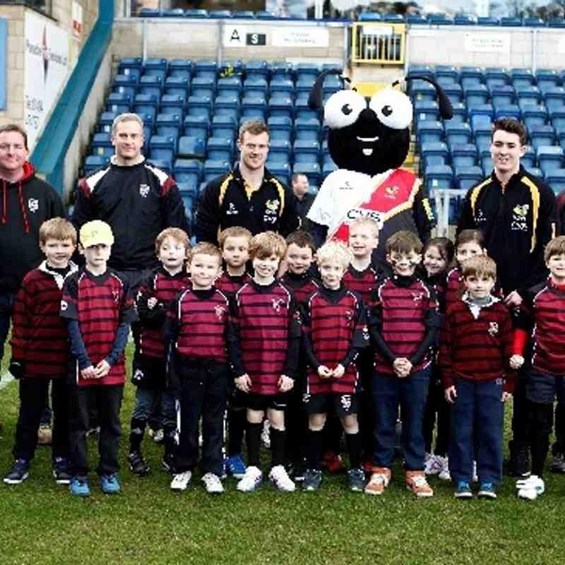 Aylesbury RFC Minis U7s @ Adams Park 1st March 2014