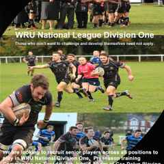 Rhiwbina RFC looking for new players for 2016-17 season.