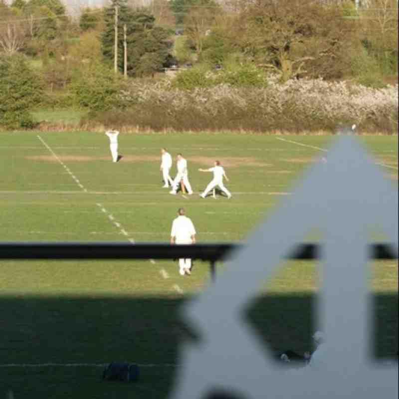 Cricket at Farnham