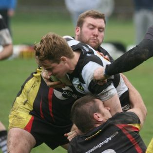 Dog fight at Eastleigh wins Farnham the title