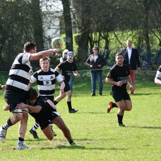 Champagne Rugby as Farnham enjoy 10 try romp