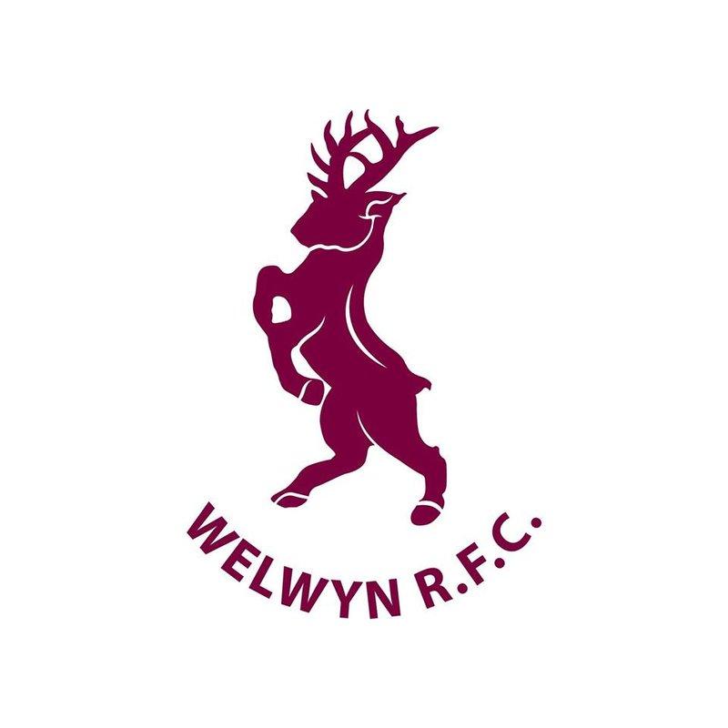 Hemel Hempstead  1st XV 41-14 Welwyn 1st XV