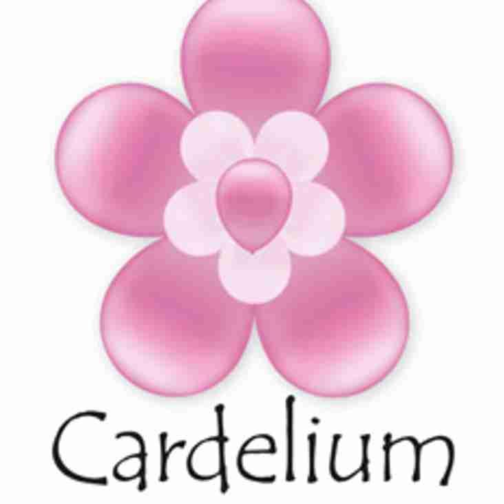 Cardelium Sponsors Wildcats