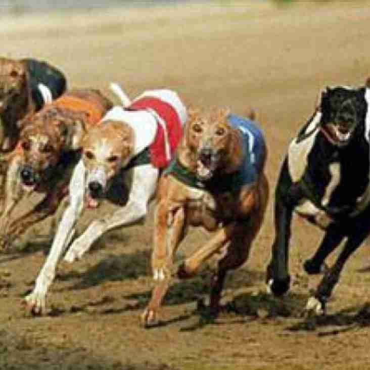 Scole trip to the dog racing- Christmas Event