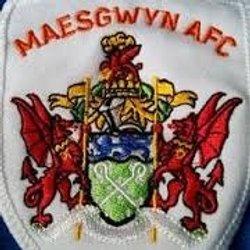 Maesgwyn
