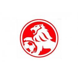 Penyffordd Lions FC