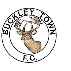Buckley Town Vets