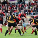 Bumper crowd watch eight try Welsh win
