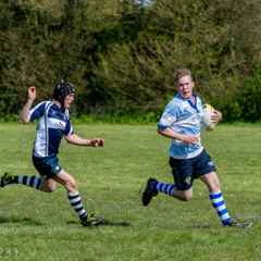Colts Ipswich 7s May 16