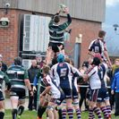 1st XV v Scarborough