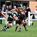 1st XV v Bradford & Bingley