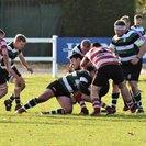 York 1st XV v Cleckheaton