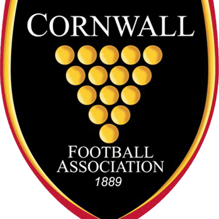 Cornwall Cup Day