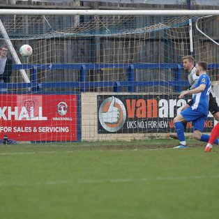 Quigley Shoots Down the Bluebirds