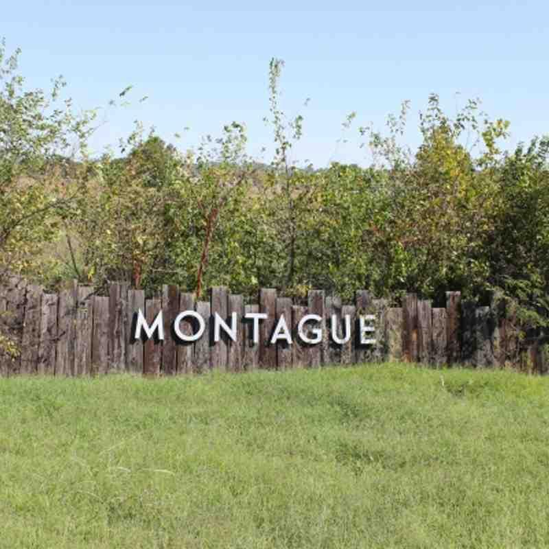 Fall 2011 - Montague Park