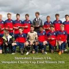 Shropshire Junior Football League Charity Cup Finals Were Held At MDTFC On The 24th April 2016