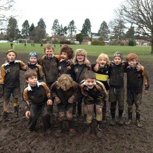 Mud Mud Glorious Mud!