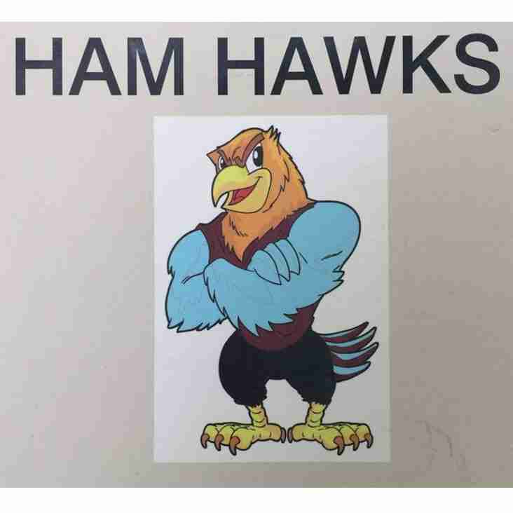 Ham Hawks Saturday Football School- Spaces Available