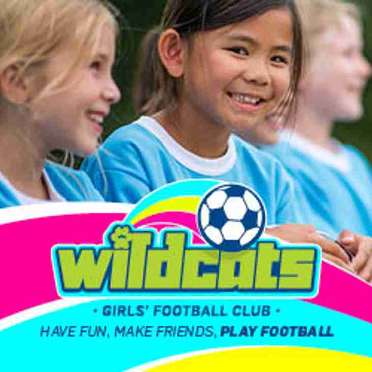 Wild Cats Girls Football  Relaunch 11th November 2017