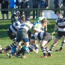 Poor defence gave Pulborough an easy win with their free running backs scoring at will.