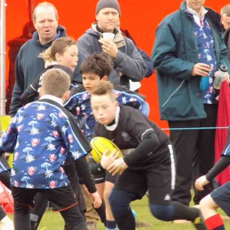 Under 10's v Rye Tournament 2015 - 2nd May 2015