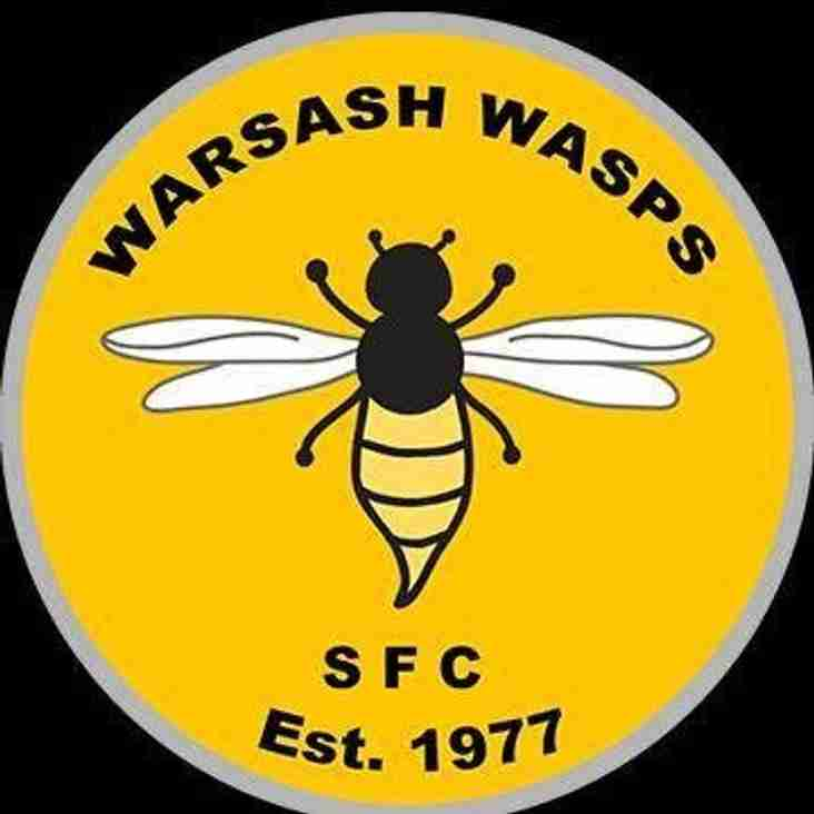 Ladies away to Warsash Wasps - Sunday 7th April 2019