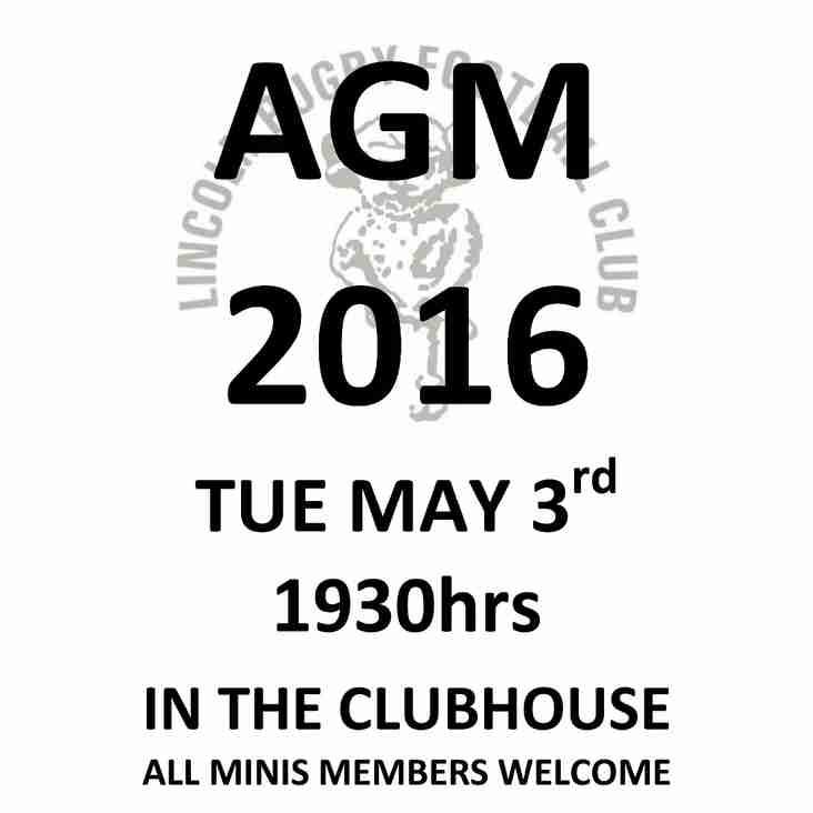 LRFC MINIS AGM 2016