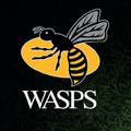 Wasps Club Cashback