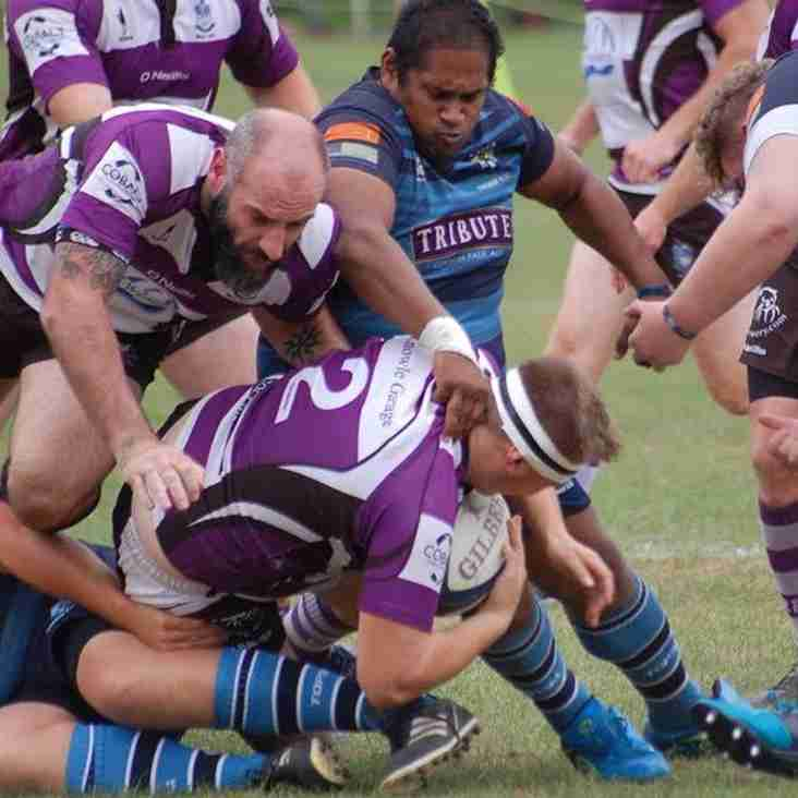 Exmouth Rugby Round-Up