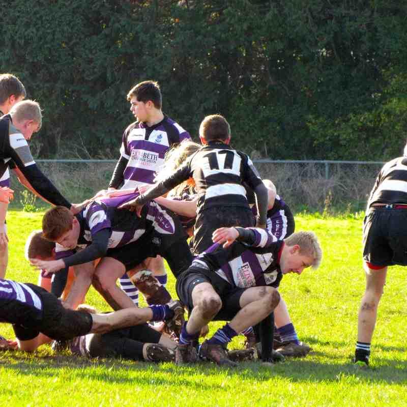 16's vs Torquay