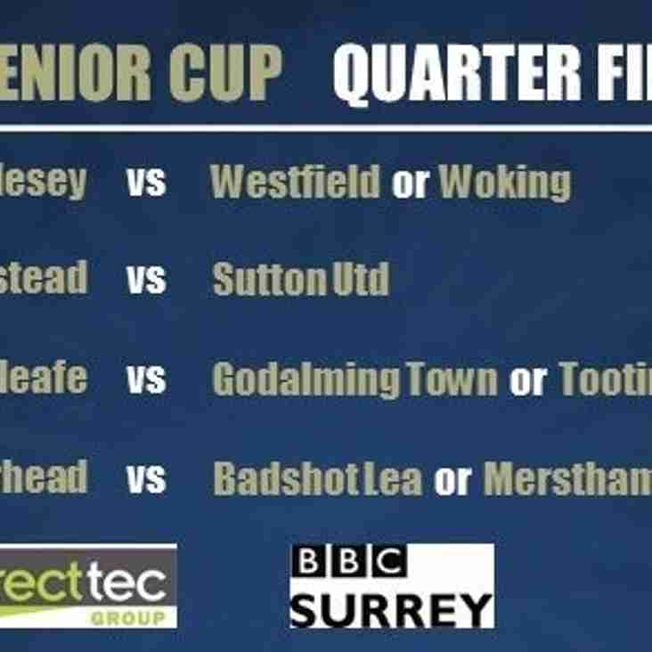 MOLES  AT HOME IN SURREY SENIOR CUP 1/4 FINAL