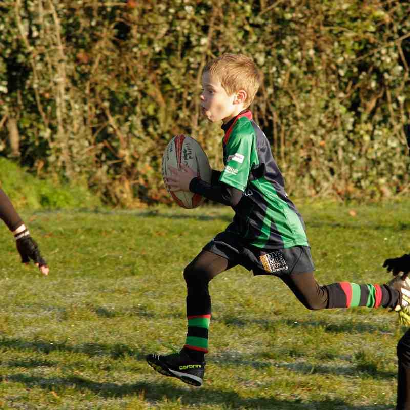 Mini rugby:  CV v Cavan - 21 Jan 17