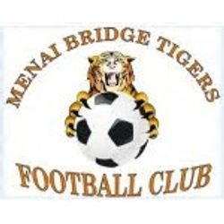 Menai Bridge Tigers