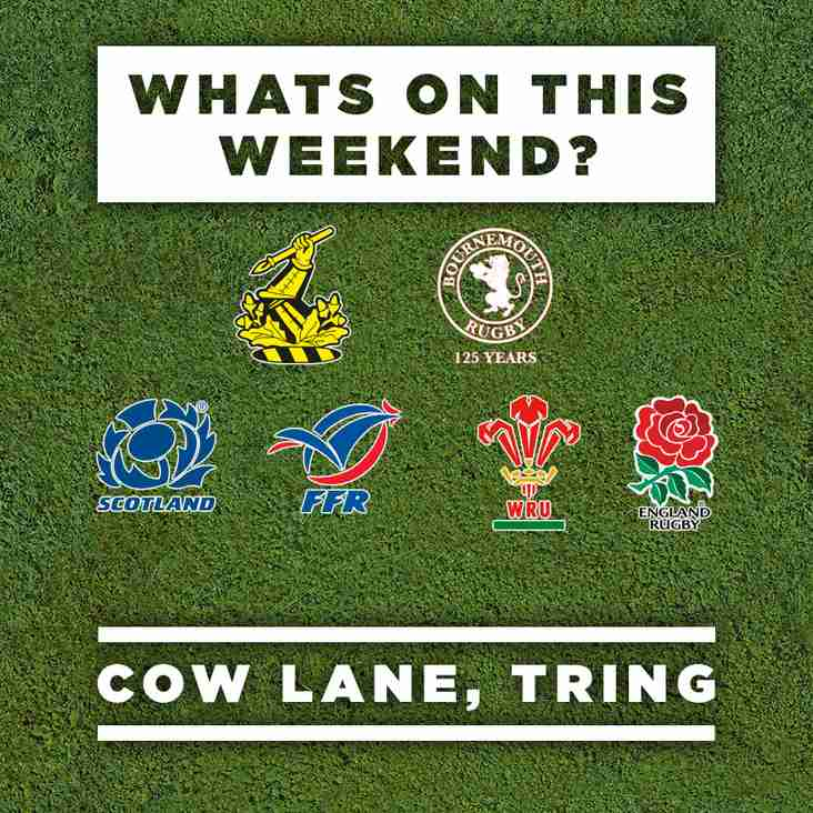 The Six Nations returns to Cow Lane
