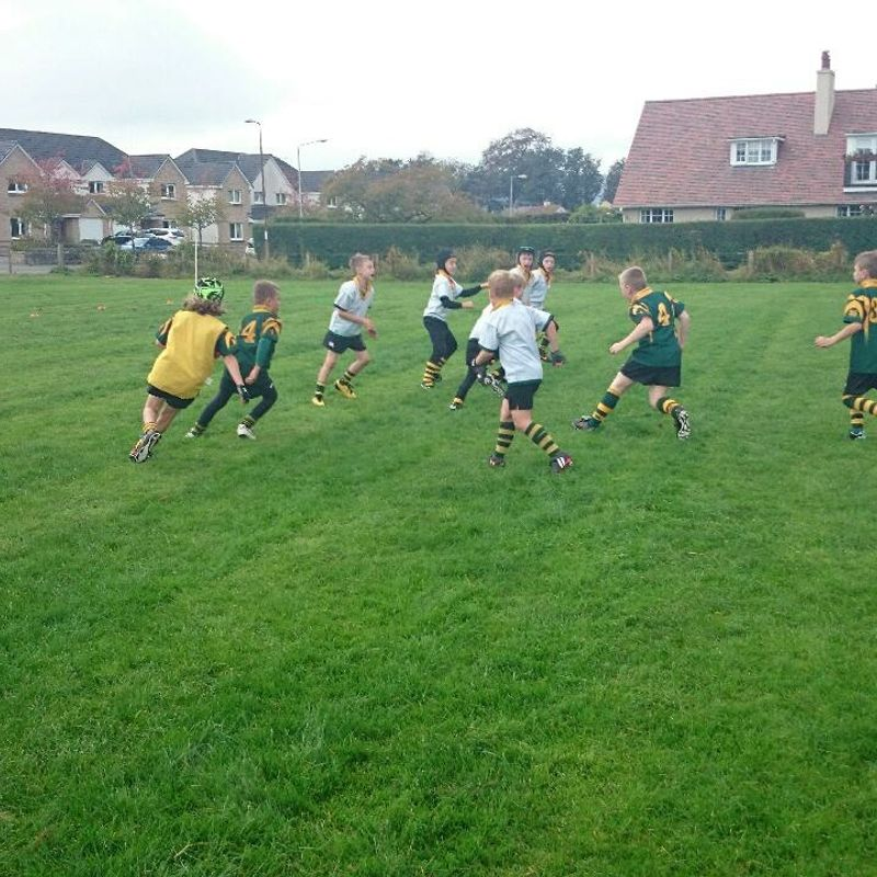 Mini Rugby Fixtures