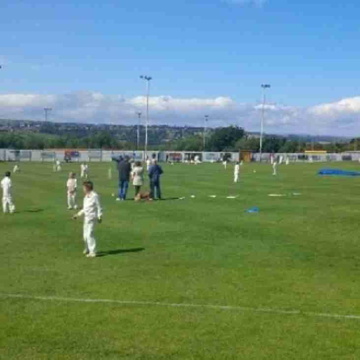 All Ears - Junior Cricket Feedback