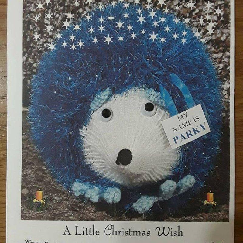 Christmas card Awareness and Fund Raising Program
