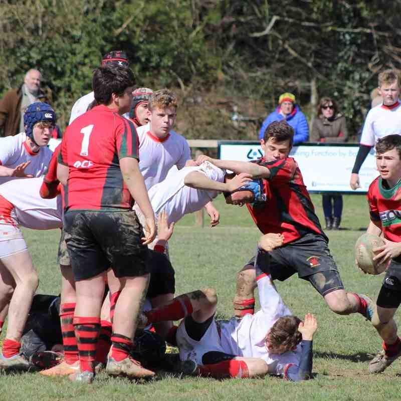 Whitchurch U15s v Newtown U15s 10/04/2016 at COBRA RFC